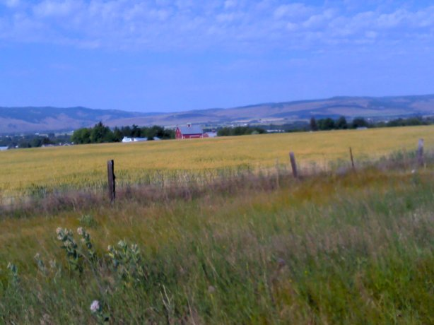 View of Kittitas Valley