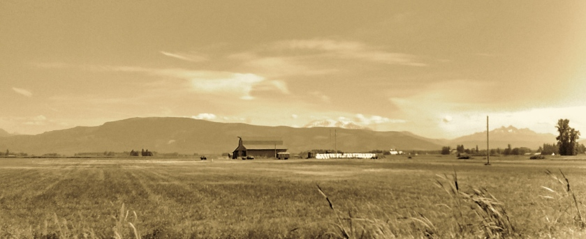 Sepia tone photo of a field and barn.